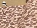 Schlafsofa /-sessel in sehr gutem Zustand - Vorschaubild 3