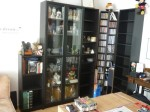 IKEA System (Vitrine, Bücherregal, CD Regal, Sideb